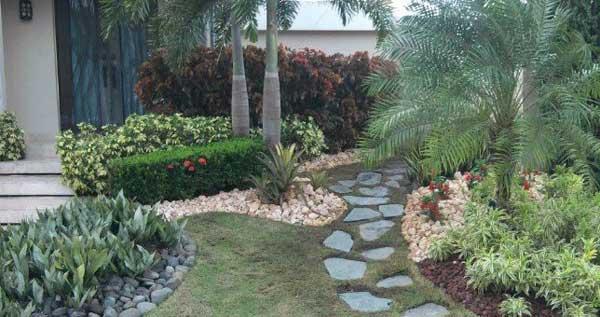 Desde 19 por recorte de grama poda de arbusto for Arbustos para patios